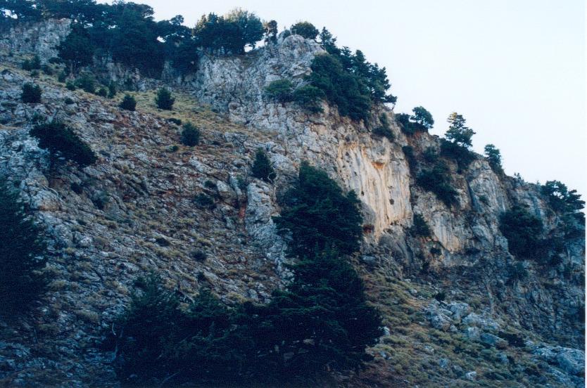 ag.irini51